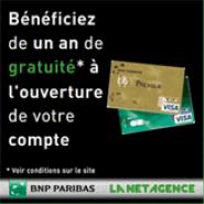 LA NET AGENCE : Votre carte bancaire VISA gratuite pendant 1 an pour toute ouverture de compte